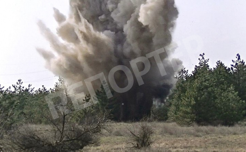 В Павлограде возле дач нашли старую мину