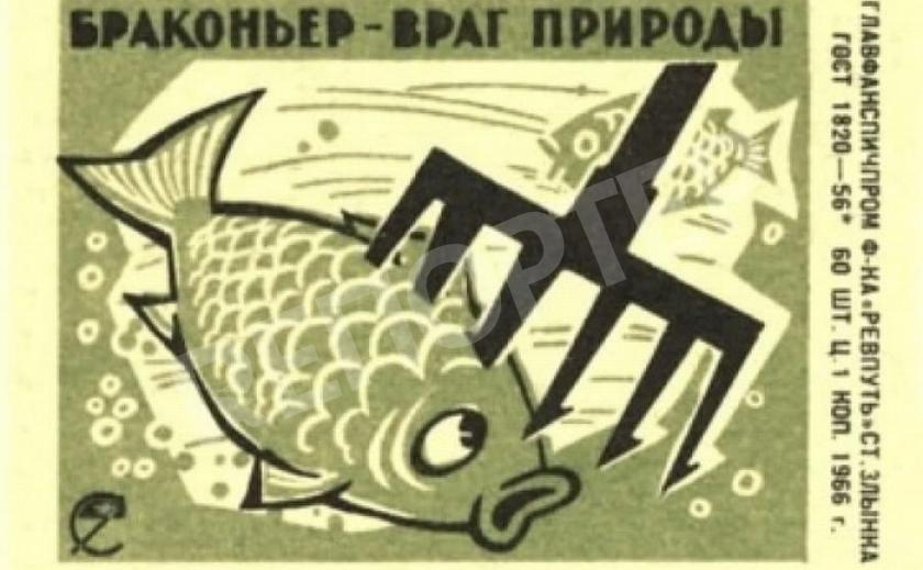 Рыбам - жизнь! Павлоградские браконьеры достали активистов