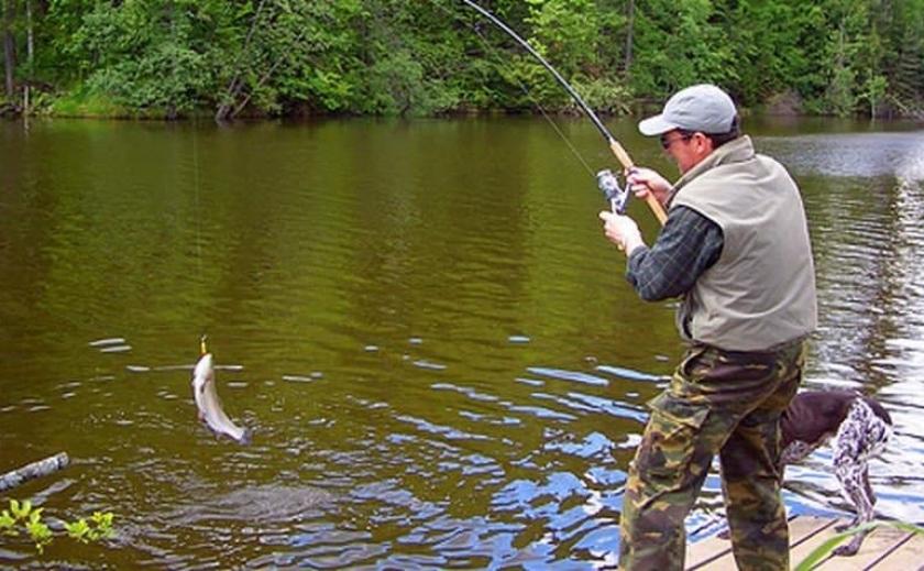 КУДА ПОЕХАТЬ НА РЫБАЛКУ: Рыбные места в Покровском и Межевском районах Днепропетровщины