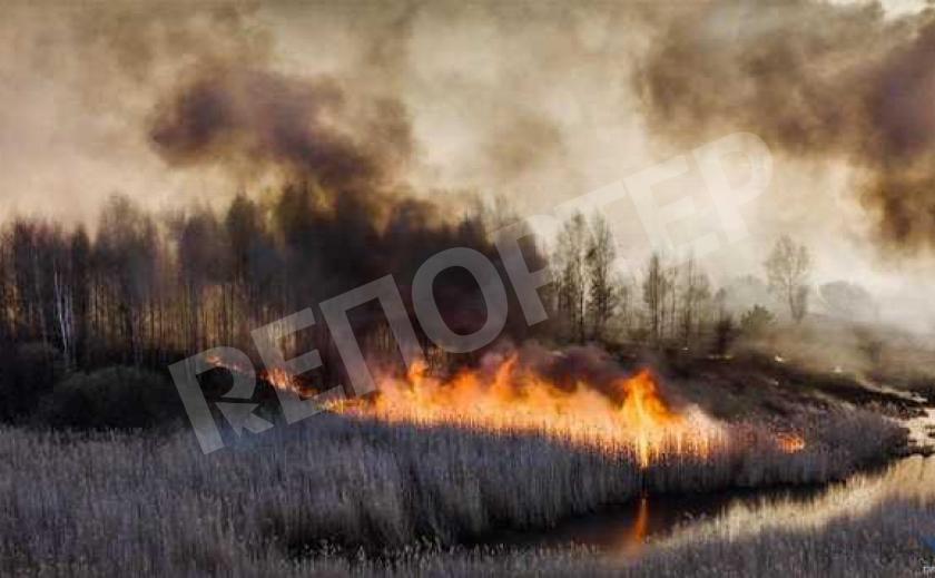 Павлоград не снижает градус пожаров